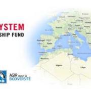 CEPF Med Newsletter