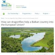 How can dragonflies help a Balkan country into the European Union?